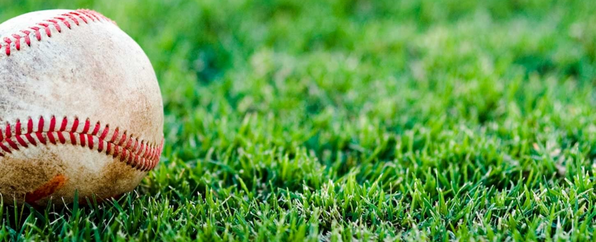 baseball lying on healthy green grass